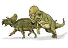 Afbeeldingen Dinosaurussen