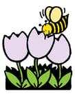 Afbeelding bij en tulpen