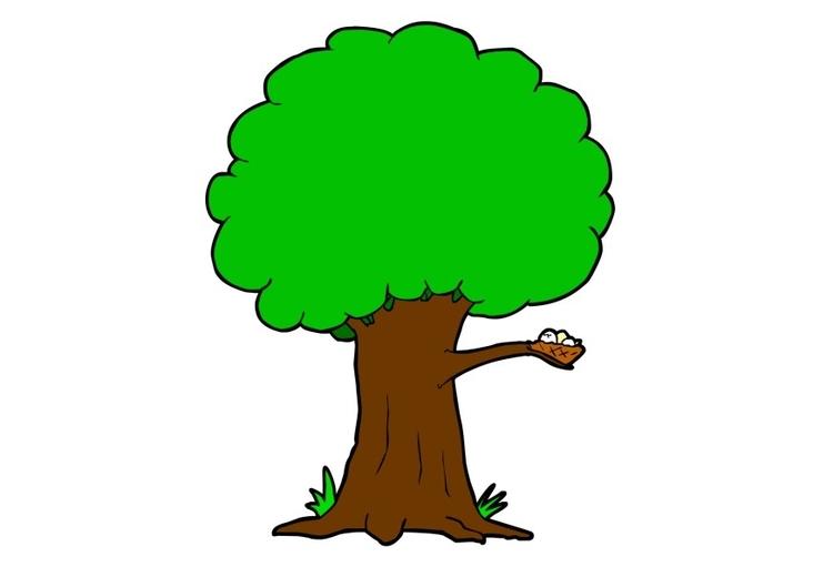 Afbeeldingsresultaat voor boom prent