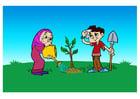 Afbeelding boom planten