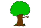 Afbeelding boom