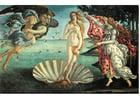 Afbeelding De Geboorte van Venus - Sandro Botticelli