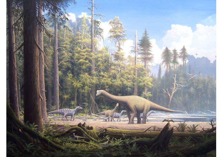 Afbeelding Prent Dinosaurussen Afb 7202
