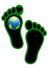 Afbeelding ecologische voetafdruk