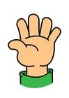 Afbeelding hand