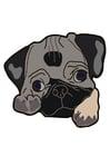 Afbeelding hond - mops