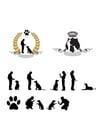 Afbeelding hond trainen