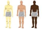 Afbeelding huidskleuren
