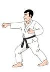 Afbeelding karate