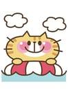 Afbeelding kat
