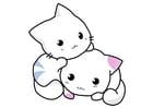 Afbeelding katjes