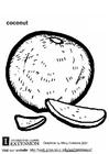 Kleurplaat kokosnoot