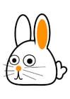 Afbeelding konijn - schuin