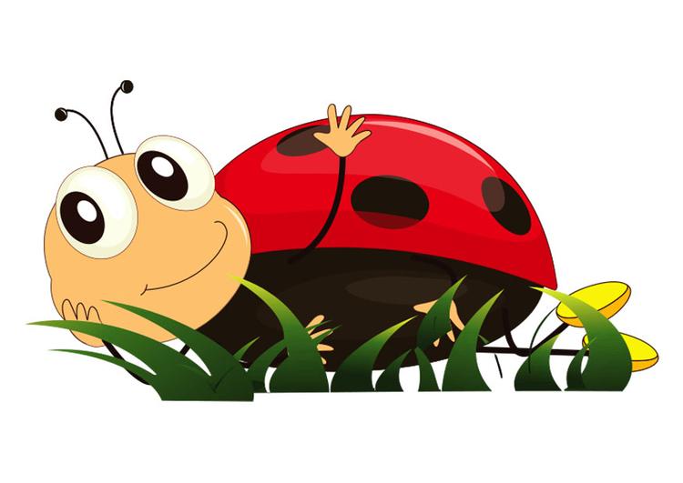Afbeeldingsresultaat voor lieveheersbeestje tekening