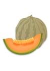 Afbeelding meloen