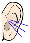 Afbeelding oor - geluid