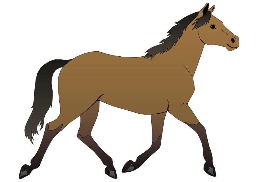 Afbeelding prent paard afb 20300 - Dessin un cheval ...
