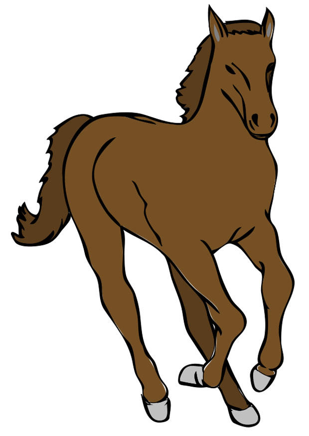 Afbeelding prent paard afb 20794 for Scarica clipart