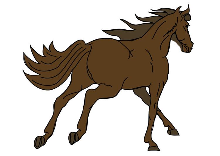 Afbeelding Prent Paard Afb 20773