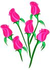 Afbeelding rozen