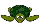 Afbeelding z1-schildpad