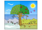 Afbeelding vier seizoenen
