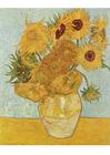Afbeelding Vincent Van Gogh - Zonnebloemen