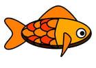 Afbeelding vis