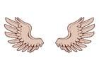 Afbeelding vleugels