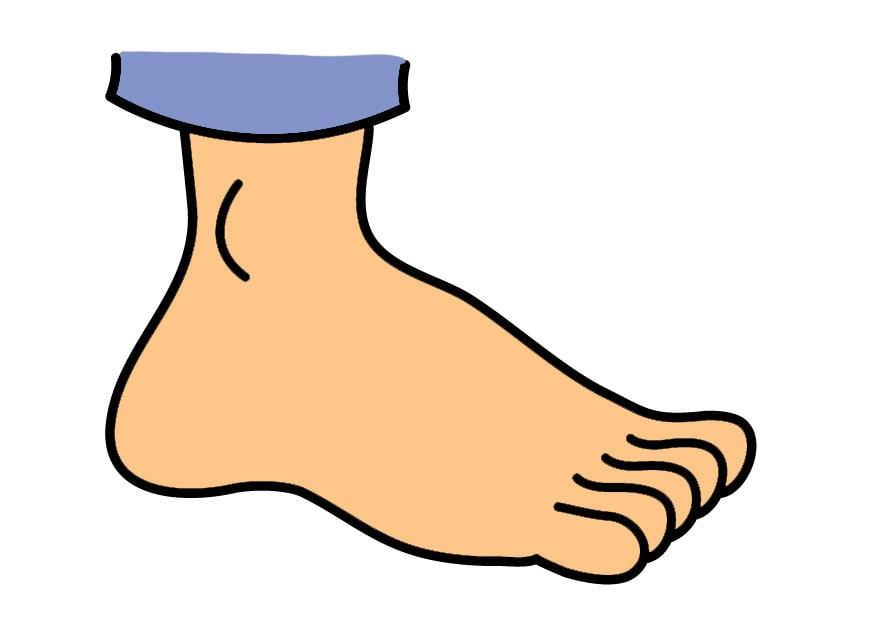 Afbeelding prent voet afb 26911 - Dessin de pied ...