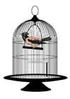 Afbeelding vogel in kooi