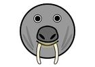 Afbeelding r1 - walrus