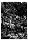 Foto Duitse graven in Noord Frankrijk