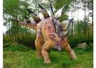 Foto Stegosaurus replica
