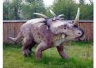 Foto Styracosaurus replica
