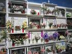 Foto begraafplaats