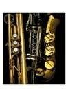 Foto blaasinstrumenten