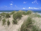 Foto duinen en zee