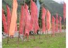 Foto gebedsvlaggen