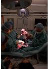 Foto geboorte met keizersnede