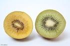 Foto gele en groene kiwi