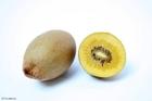 Foto gele kiwi