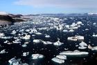 Foto gletsjers en ijsbergen