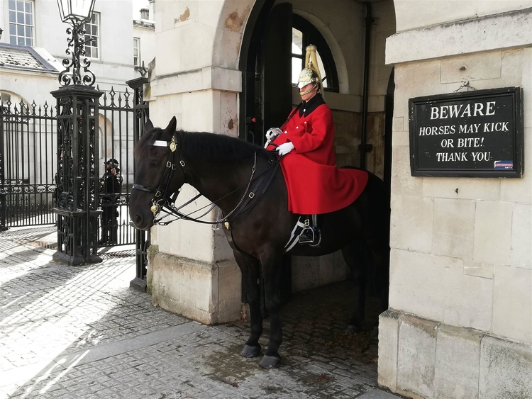 Foto Household cavalry London