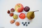 Foto inheems fruit