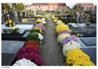 Foto kerkhof
