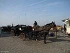 Foto koets met paard