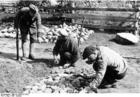 Foto Rusland - Joden bij stratenbouw