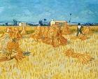 Foto schilderij van Vincent van Gogh