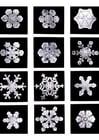 Foto sneeuw kristallen